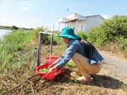 Tiền Giang sẽ cung cấp nước miễn phí cho hơn 5.000 hộ dân