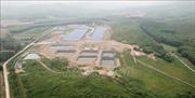 Trại lợn công nghệ cao bị tố gây ô nhiễm môi trường