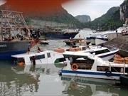 Chìm tàu chở khách du lịch tuyến Vân Đồn - Cô Tô
