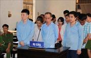 Xét xử vụ lừa đảo chiếm đoạt hơn 114 tỷ đồng tại Agribank Krông Bông, Đắk Lắk
