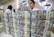 Đồng USD áp sát mức 'đỉnh' của 22 tháng