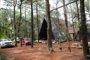 Bắt đầu cưỡng chế vi phạm trật tự xây dựng đất rừng Sóc Sơn