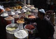 IMF nhất trí gói cứu trợ 6 tỷ USD cho Pakistan