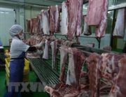 Hà Nội chủ động kiểm soát cơ sở giết mổ lợn, bình ổn giá thị trường
