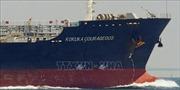Tàu Nhật Bản về hải cảng của UAE sau sự cố tàu trên Vịnh Oman