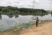 Người nuôi trồng thủy sản bức xúc vì doanh nghiệp xả thải ra môi trường