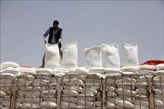 LHQ và phiến quân Houthi ký thỏa thuận nối lại viện trợ lương thực tại Yemen
