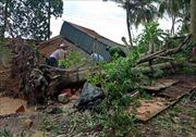 Mưa dông làm sập, tốc mái 83 căn nhà ở Cần Thơ