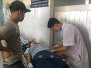 Khoảng 50 công nhân nhập viện nghi do ngộ độc thuốc diệt mối, mọt