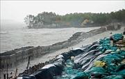 Phòng chống sạt lở khu vực Vườn Quốc gia Mũi Cà Mau