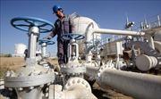Giá dầu thế giới sụt khoảng 2% do lượng dầu dự trữ của Mỹ tăng