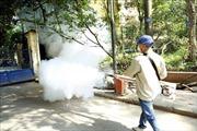 Quảng Nam: Số ca mắc sốt xuất huyết cao gấp 1,7 lần so với năm trước