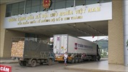 Cơ bản giải quyết ùn tắc xe chở thanh long tại cửa khẩu Lào Cai