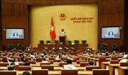 Sáng 12/11, Quốc hội thảo luận Báo cáo nghiên cứu khả thi dự án sân bay Long Thành giai đoạn 1