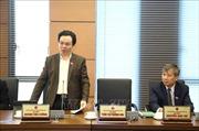 Nhiều ý kiến đối với việc bổ sung 'hộ kinh doanh' vào Luật Doanh nghiệp sửa đổi
