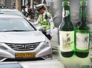 Tai nạn do uống rượu bia lái xe giảm hơn 30% tại Hàn Quốc