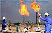 OPEC và các đối tác dự kiến tiếp tục giảm sản lượng dầu mỏ đến hết năm 2020