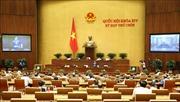 Ngày 26/5, Quốc hội cho ý kiến hai dự án Luật sửa đổi, bổ sung một số điều của Luật Tổ chức Quốc hội, Luật Đầu tư (sửa đổi)
