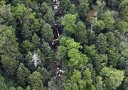 Toàn bộ 9 người thiệt mạng trong vụ rơi trực thăng cứu hộ tại Nhật Bản