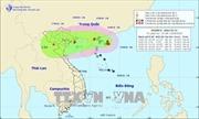 Các tỉnh, thành phố Bắc Bộ và Bắc Trung Bộ chủ động ứng phó bão số 4