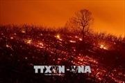 Cháy rừng lan rộng, trở thành vụ cháy lớn nhất lịch sử bang California, Mỹ