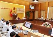 Đoàn kiểm tra của Bộ Chính trị làm việc với Đảng đoàn Quốc hội