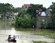 Thanh Hóa di dời 7.100 nhân khẩu vùng ngập lũ đến nơi an toàn