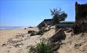 Hỗ trợ 800 tỷ đồng xử lý các điểm sạt lở bờ biển miền Trung đặc biệt nguy hiểm