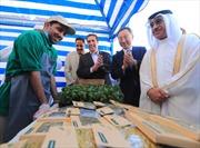 Mô hình trang trại thông minh của Hàn Quốc xây dựng trên sa mạc ở UAE