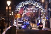 Giới chức Pháp bác bỏ sự can dự của IS trong vụ nổ súng tại khu chợ Giáng sinh