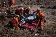 Số người thiệt mạng trong vụ vỡ đập tại Brazil không ngừng gia tăng