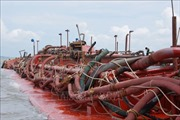 Bắt giữ hai tàu khai thác cát trái phép trên sông Hàm Luông