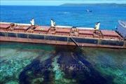 Australia kiểm soát thảm họa tràn dầu gần đảo san hô lớn nhất thế giới