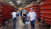 Nhà thùng Phú Quốc chờ đợi bộ tiêu chuẩn riêng cho nước mắm truyền thống