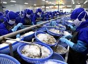 DOC công bố mức thuế sơ bộ 0% với tôm Việt Nam
