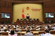 Quốc hội thảo luận Công ước số 98 của Tổ chức Lao động quốc tế