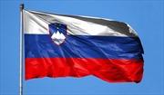 Tổng Bí thư, Chủ tịch nước Nguyễn Phú Trọng gửi điện mừng Quốc khánh Slovenia