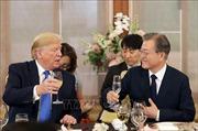 Tổng thống Mỹ, Hàn Quốc ủng hộ cuộc gặp thượng đỉnh Mỹ - Triều ở DMZ
