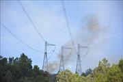 Cháy rừng đe dọa hệ thống truyền tải điện quốc gia như thế nào?