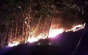 Nỗ lực khống chế đám cháy rừng ở huyện Hiệp Đức, Quảng Nam