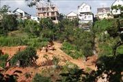 Tràn lan san ủi, phân lô đất nền trái phép tại Đà Lạt