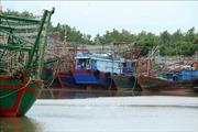 Bão số 3: Hải Phòng tạm dừng các hoạt động vận tải đường thủy nội địa