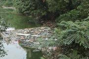 Giải quyết ô nhiễm môi trường hệ thống thủy lợi Bắc Hưng Hải