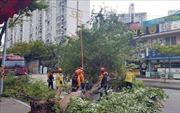 Hai miền Triều Tiên khắc phục hậu quả bão Lingling
