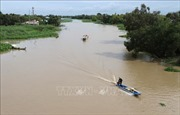 Từ ngày 11-15/2, xuất hiện xâm nhập mặn cao nhất trên sông Cửu Long