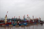 Bình Định không cho phép đóng mới tàu cá dưới 6 m