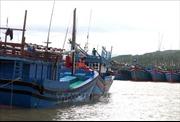 Thừa Thiên - Huế và Ninh Thuận cấm biển đề phòng bão số 5 đổ bộ