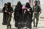 Tổng thống Thổ Nhĩ Kỳ: Lực lượng người Kurd đã thả 750 phần tử IS