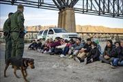 Số người di cư bị Mỹ bắt giữ lên mức kỷ lục