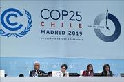 COP 25 - Cơ hội bị đánh mất